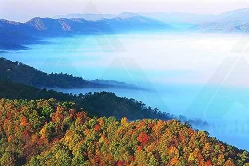 宜昌拓展基地:大老岭国家森林公园