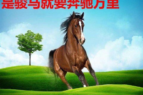 彩虹少年_励志教育