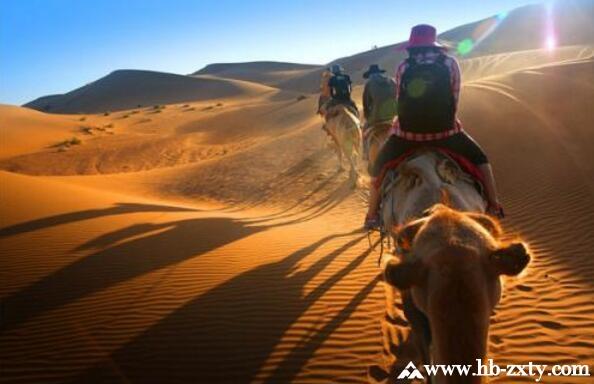 旅行团建丨穿越腾格里沙漠