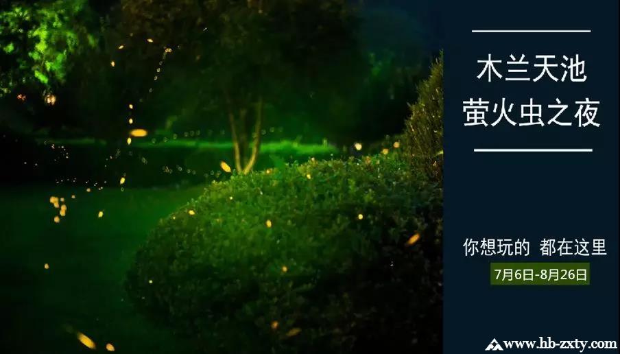 户外游玩|木兰天池萤火虫之夜浪漫回归,怎能不赴约?