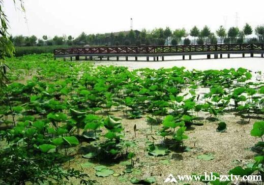 为了让夏季户外拓展多点清凉,掘地三尺,在武汉找了这10处秘境!
