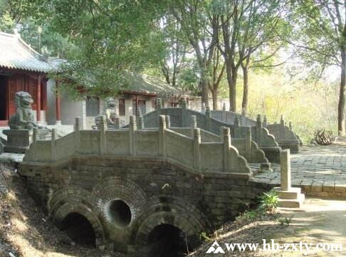 荆州拓展团建基地_八岭山森林公园拓展基地