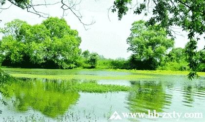 天门拓展基地:张家湖湿地公园拓展基地
