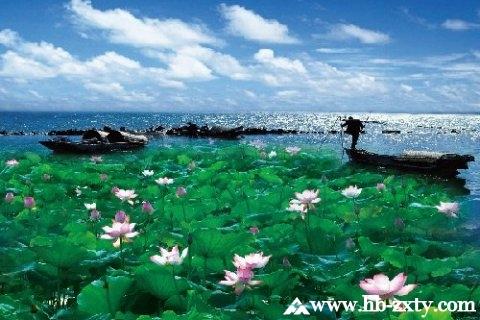 荆州拓展基地:洪湖蓝田生态旅游风景区