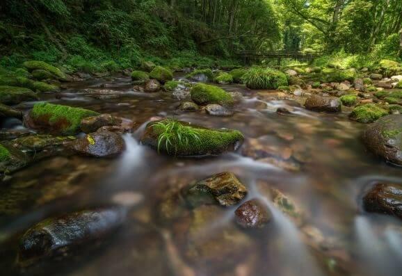 湖南拓展基地:张家界国家森林公园