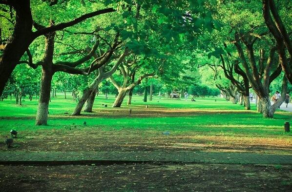 湖南拓展基地:长沙橘子洲头景区