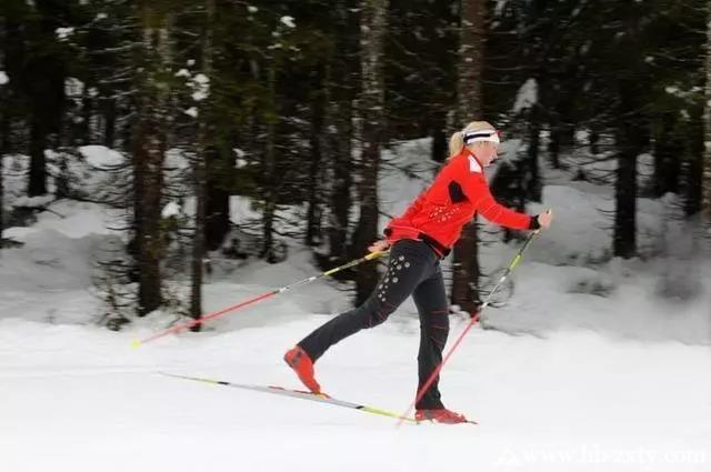 【拓展攻略】菜鸟必看的滑雪速成指南