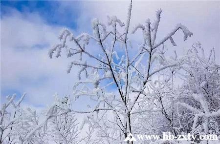 飘雪季,最佳团建基地—恩施大峡谷