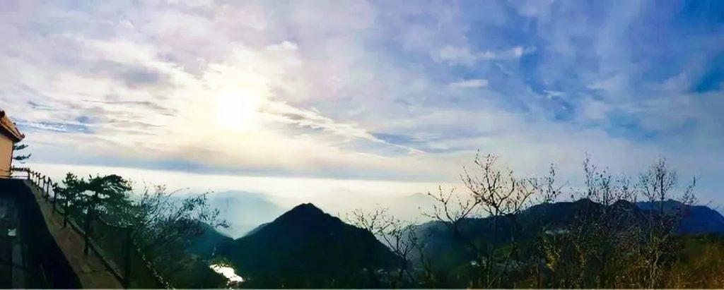 姹紫嫣红|人间四月天,麻城看杜鹃